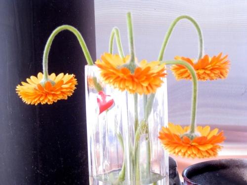 Valentineflowers